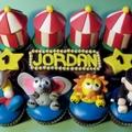 The Circus - cupcakes photo