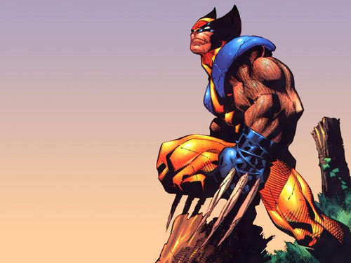 Wolverine Wallpaper Called Comics