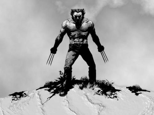 Wolverine 壁纸