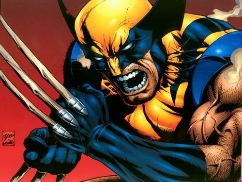 Wolverine wallpaper containing anime entitled Wolverine Wallpaper