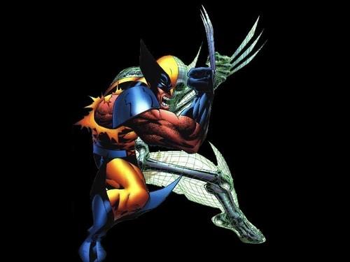 Wolverine fond d'écran