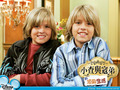 christie - the-sprouse-brothers wallpaper