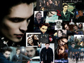 edward-collage - twilight-series photo