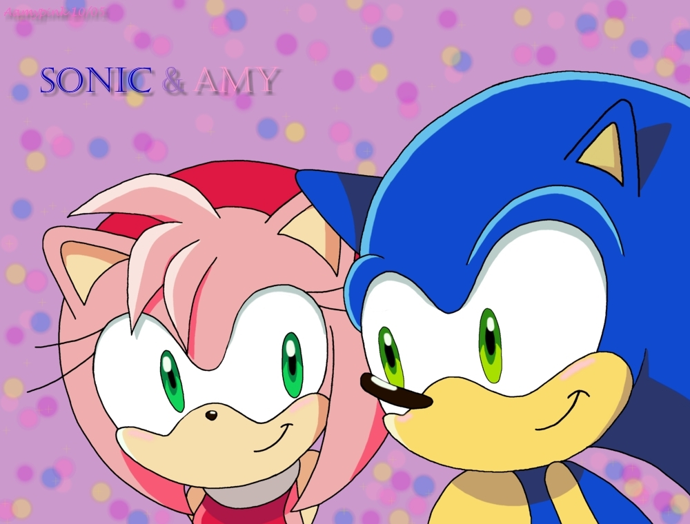 http://images2.fanpop.com/images/photos/3500000/sonic-and-amy-sonic-and-amy-3565336-1000-760.jpg