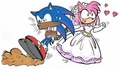 sonic and amys wedding