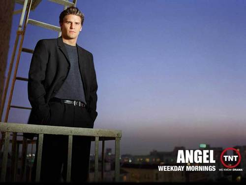 David Boreanaz wallpaper with a business suit entitled David