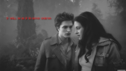 Edward and Bella پیپر وال possibly containing a fountain, a well dressed person, and a box کوٹ entitled Edward & Bella [New Moon] Header