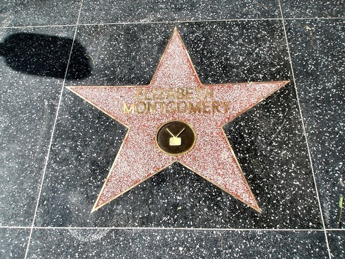 Elizabeth Montgomery Walk Of Fame Star - bewitched Wallpaper