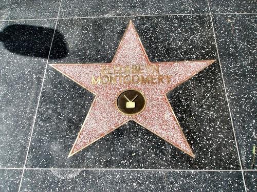 Elizabeth Montgomery Walk Of Fame bintang