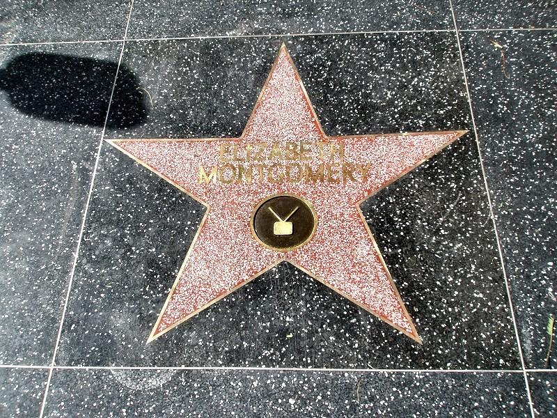 Elizabeth Montgomery Walk Of Fame estrella
