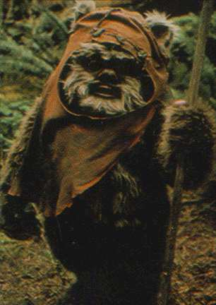Ewok-star-wars-creatures-3636237-306-432.jpg