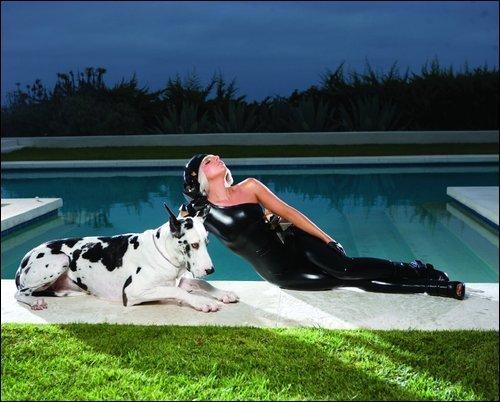 Lady Gaga gambar