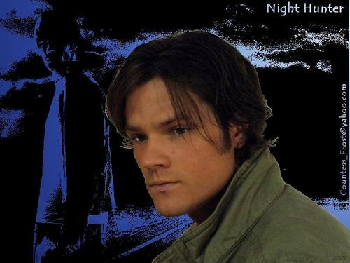 Night Hunter (3)