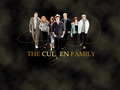 twilight-series - The Cullen family wallpaper