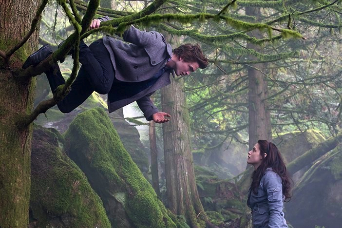 the impact of the twilight movie series on future vampire themed movies What is the complete twilight movie series most people recommend watching all of the twilight movies in order  tell me about next movies of twilight series.