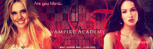 Vampire Adacemy Banner