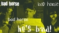 Bad Horse Song