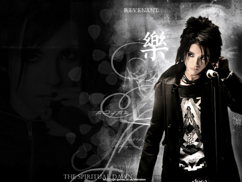 Tokio Hotel wallpaper entitled Bill