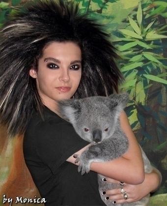 Bill & koala