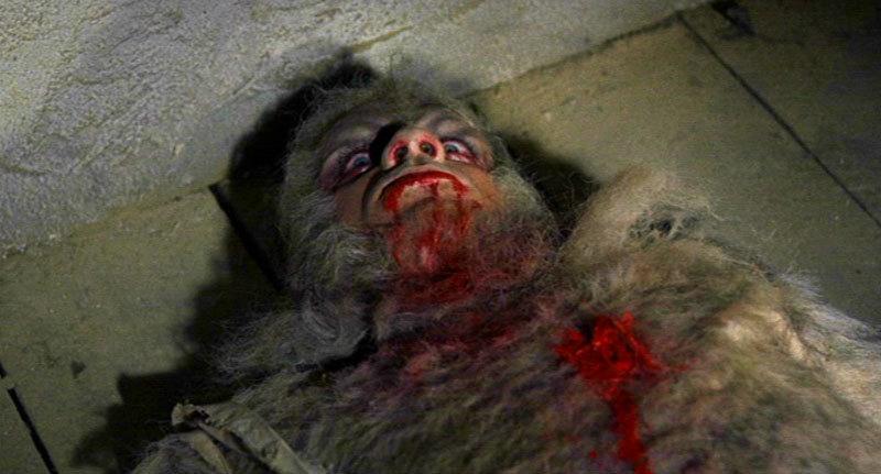Curse of the werewolf hammer horror films 3739571 800 431