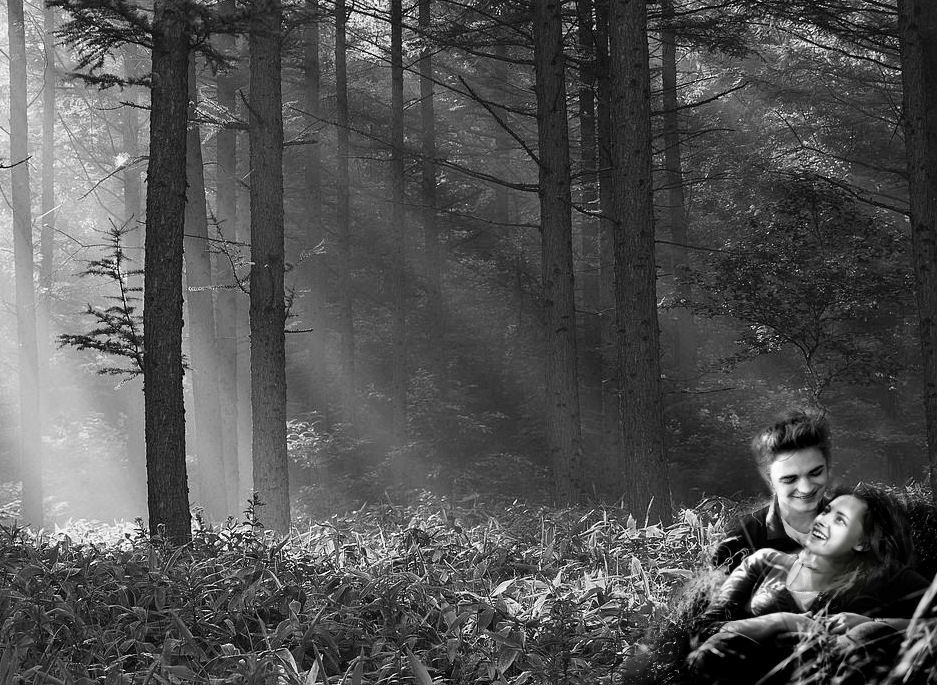 Edward and Bella grassy forrest