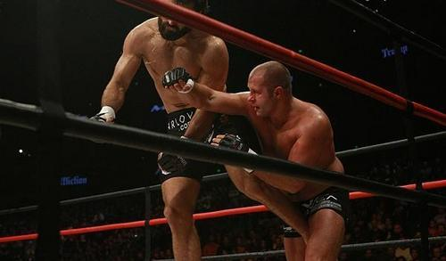 MMA wallpaper entitled Fedor Emelianenko vs. Andrei Arlovski