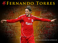 Fernando Torres - fernando-torres wallpaper