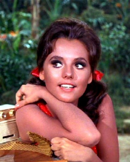 Mary ann gilligan s island me in a past life pinterest