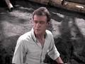 Gilligan's Island: The Professor