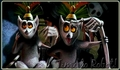 King Julian - king-julien photo