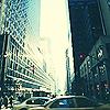 Terra 616 New-York-new-york-3788698-100-100