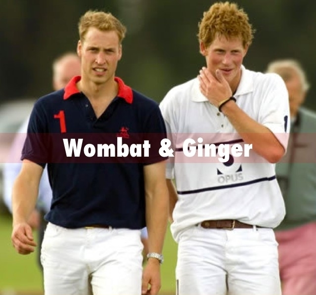 prince william and harry official photo. prince william prince harry.