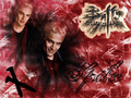 Spike - buffy-the-vampire-slayer wallpaper