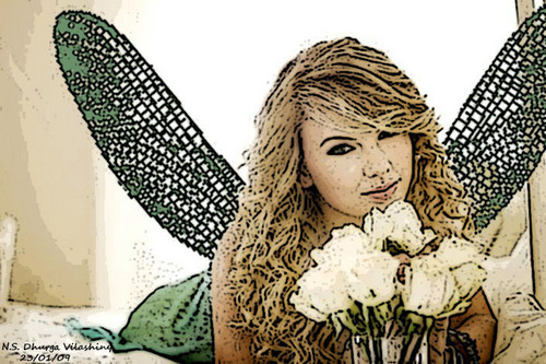 Taylor veloce, swift as a fairy