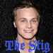 The Stig - Adam - Icon