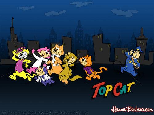 سب, سب سے اوپر Cat پیپر وال