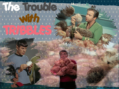 Tribble Wallpaper