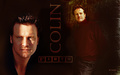 WPColin - colin-firth wallpaper