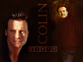 WPColin1024x768 - colin-firth wallpaper
