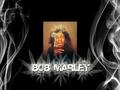 Bob Marley - bob-marley wallpaper