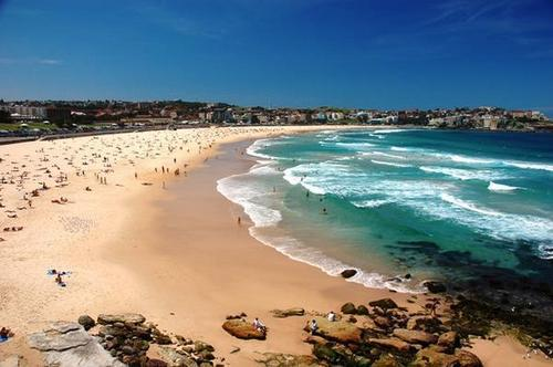 Australia 바탕화면 possibly containing a beach, a seashore, and an 오션, 오션 프론트 called Bondi 바닷가, 비치