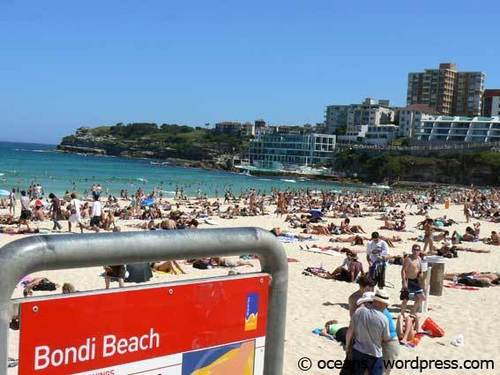 Australia wallpaper containing a business district called Bondi Beach