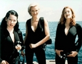 Charlies Angels - charlies-angels photo