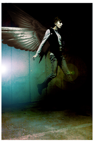 Maximum Ride fã Art