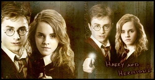 Harry and Hermione wallpaper with a portrait called HHR  FaN ArT