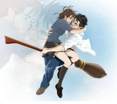 Harry and Hermione wallpaper probably containing a hip boot titled HHR  FaN ArT