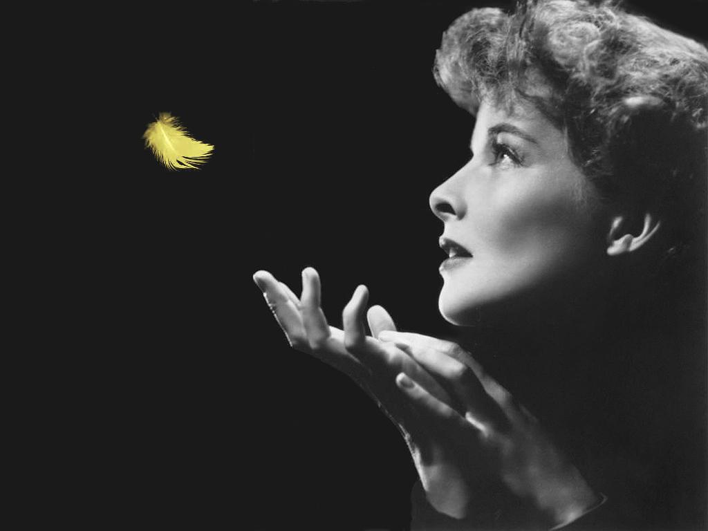 Katharine Hepburn Katharine Hepburn Wallpaper 3832541