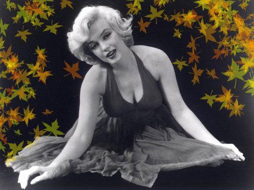 Marilyn Monroe karatasi la kupamba ukuta called Marilyn Monroe