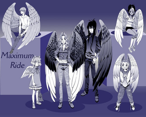Maximum Ride 壁纸 titled Maximum Ride