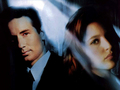 Mulder and Scully - mulder-and-scully wallpaper
